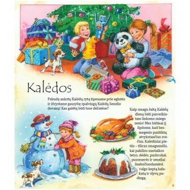 BROKAS!!! Nuotykiai per Kalėdas (Įplyšęs viršelis) 2