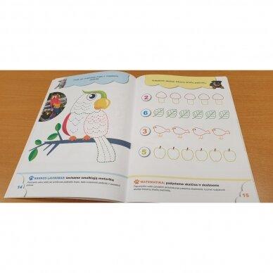 4-mečių užduotys. Garsai ir raidės, skaičiai ir skaitmenys, loginis mąstymas, rankos lavinimas 5