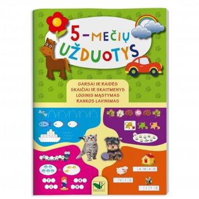5-mečių užduotys. Garsai ir raidės, skaičiai ir skaitmenys, loginis mąstymas, rankos lavinimas (IŠ GRĄŽINIMŲ)