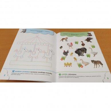 6-mečių užduotys. Garsai ir raidės, skaičiai ir skaitmenys, loginis mąstymas, rankos lavinimas 6