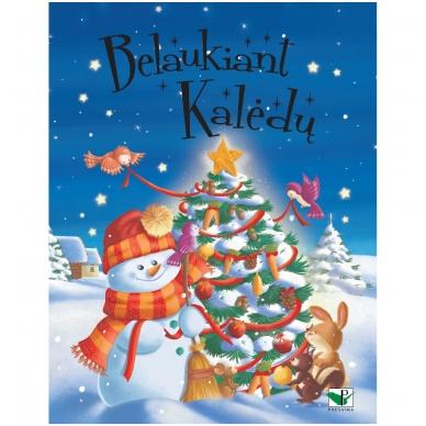 Belaukiant Kalėdų
