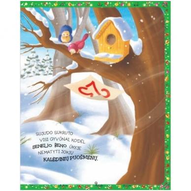 Belaukiant Kalėdų 2