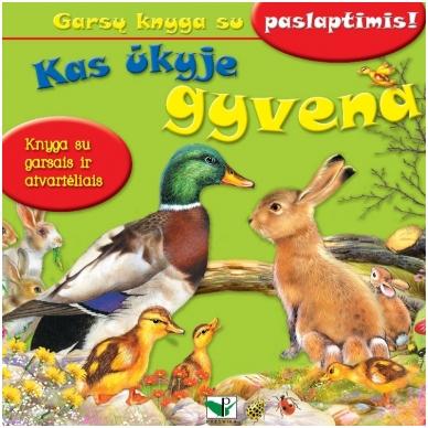 BROKUOTA!!! Kas ūkyje gyvena. Garsų knyga su paslaptimis. BROKUOTA!!! 2