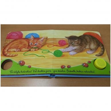Gyvūnų balsai. Kačiukas miaukia miau 3