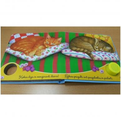 Gyvūnų balsai. Kačiukas miaukia miau 6