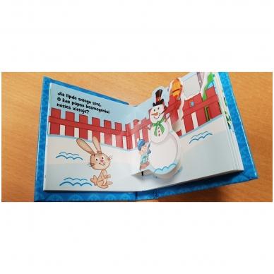 Knygelių karuselė. Džiaugsmingų Kalėdų 11