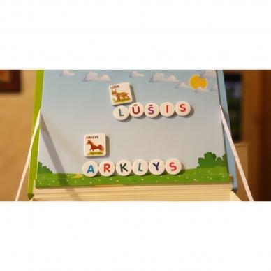 Magnetinis RAIDYNAS su užduotėlėmis. 136 raidės, 28 kortelės, 32 užduotys 15