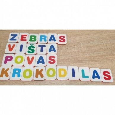 Mano pirmosios raidės SU UŽDUOTĖLĖMIS 4-5 metų vaikams (knyga su 64 putplasčio kortelėmis) (2021 m.) 4