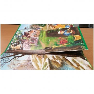 Metų laikai. Knyga su atvartėliais. Kaip keičiasi gamta, ką veikia žmonės. Pavasaris, vasara, ruduo, žiema. 11