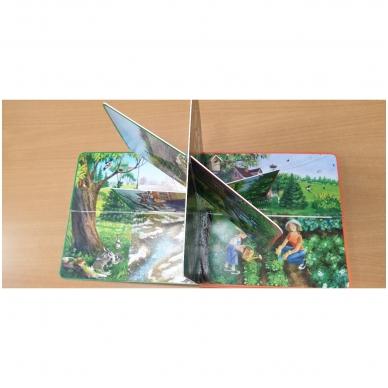 Metų laikai. Knyga su atvartėliais. Kaip keičiasi gamta, ką veikia žmonės. Pavasaris, vasara, ruduo, žiema. 12