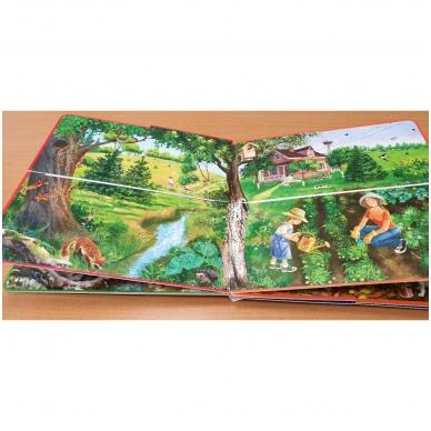 Metų laikai. Knyga su atvartėliais. Kaip keičiasi gamta, ką veikia žmonės. Pavasaris, vasara, ruduo, žiema. 7