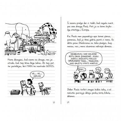 Nevykėlio dienoraštis 15. Netikėti vasaros nuotykiai 8