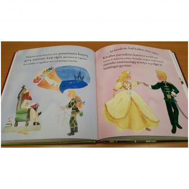 Pasakos apie princus ir princeses 8
