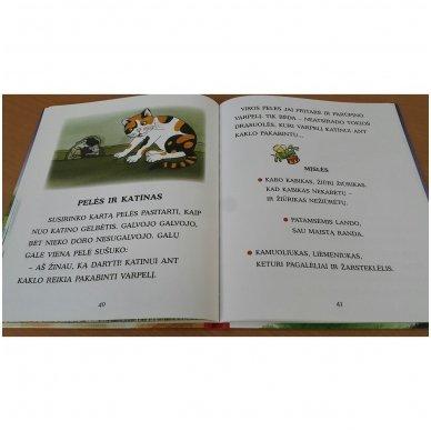 Pasakos ir mįslės. Pirmoji skaitymo knyga 5-6 metų vaikams 10
