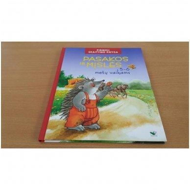 Pasakos ir mįslės. Pirmoji skaitymo knyga 5-6 metų vaikams 2