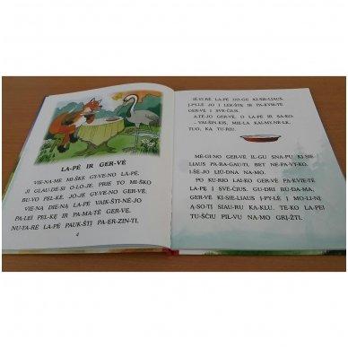 Pasakos ir mįslės. Pirmoji skaitymo knyga 5-6 metų vaikams 3