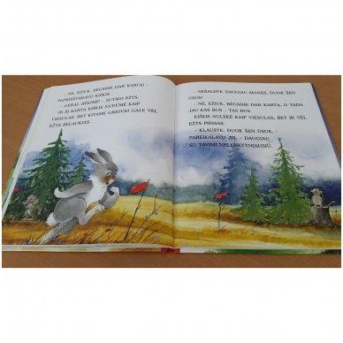 Pasakos ir mįslės. Pirmoji skaitymo knyga 5-6 metų vaikams 4