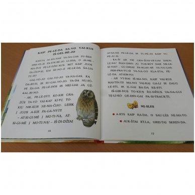 Pasakos ir mįslės. Pirmoji skaitymo knyga 5-6 metų vaikams 6