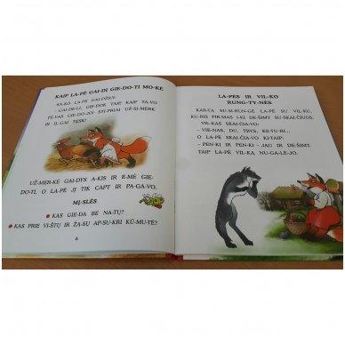 Pasakos ir mįslės. Pirmoji skaitymo knyga 5-6 metų vaikams 7