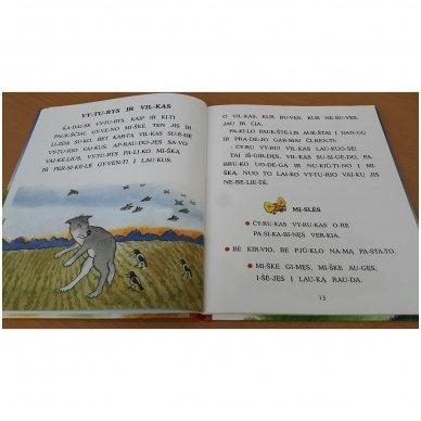 Pasakos ir mįslės. Pirmoji skaitymo knyga 5-6 metų vaikams 8