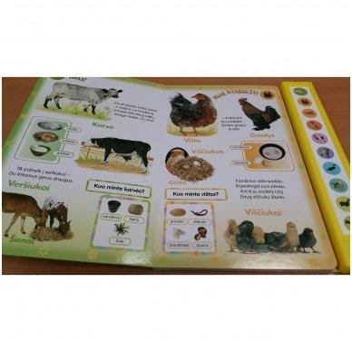 Paspausk – mes kalbame! Naminiai gyvūnai 3