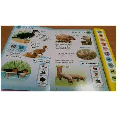 Paspausk – mes kalbame! Naminiai gyvūnai 5
