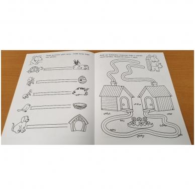 Pirmieji rankos lavinimo žingsneliai 4-5 metų vaikams 8