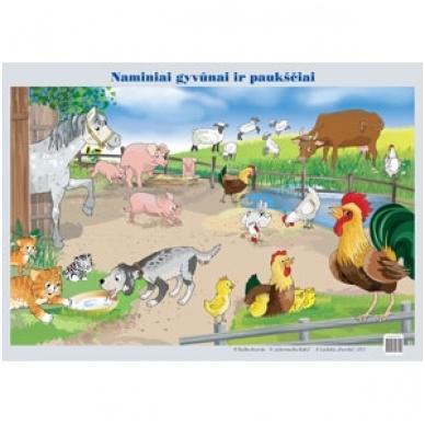 """Plakatas """"Naminiai gyvūnai ir paukščiai"""" (A2 formato)"""