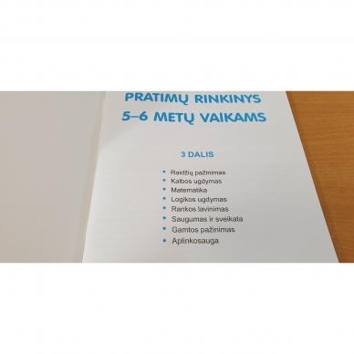 Pratimų rinkinys 5-6 metų vaikams. 3 dalis 3