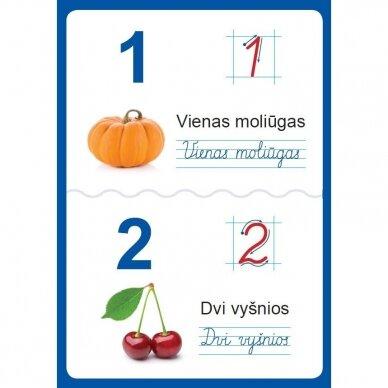 Raidžių ir skaičių plakatai (35 standūs A3 formato plakatai) (smulkūs defektai, išpakuoti) 6