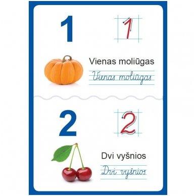Raidžių ir skaičių plakatai (35 standūs A3 formato plakatai) 6