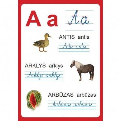 Raidžių ir skaičių plakatai (35 standūs A3 formato plakatai) (smulkūs defektai, išpakuoti) 3