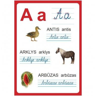 Raidžių ir skaičių plakatai (35 standūs A3 formato plakatai) 3