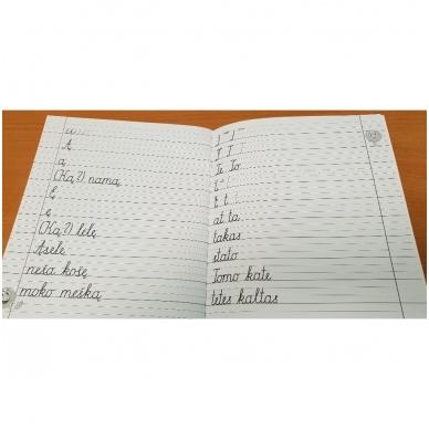 Rašymo pratybos 2 dalis 4
