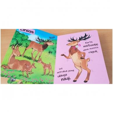 Spausk ir klausyk. Miško gyvūnai 4