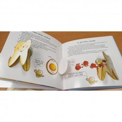 Viskas apie tavo dantukus (Su dantukų dėžute) 5