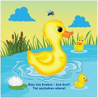 Maudynių knygelė. Kas čia plaukia? Nuspalvink vandeniu! 2